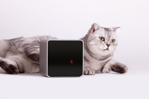 2015 home tech gadgets-PetCube-Yesgulf