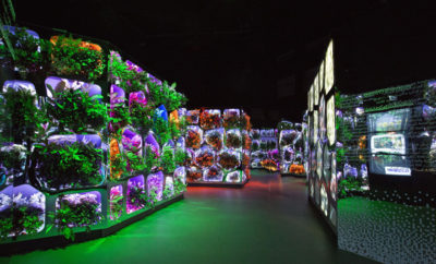 AutoFarm  a fully automated robotic urban farm that fills empty parking garages and neighborhood warehouses with food once self driving cars make garages obsolete 400x242 - Sheikh Mohammed Launched 'Climate Change Reimagined': An Exhibition by The Museum of the Future in Dubai