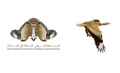 IFHC logo 1494505211 400x242 - Houbara Fund Launches a Cultural and Awareness Campaign on Social Media to Mark the World Migratory Bird Day
