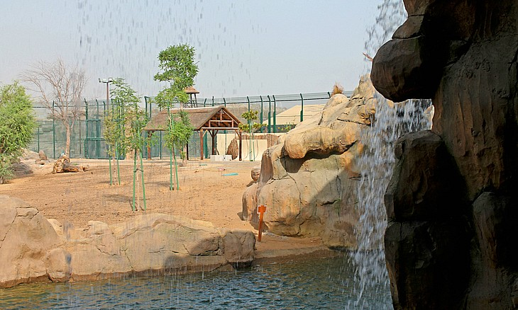 fun activities - Let's go for Dubai Safari Park