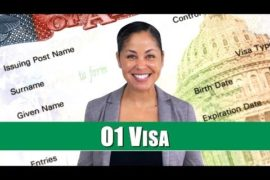 01 visa usa marcus yi law